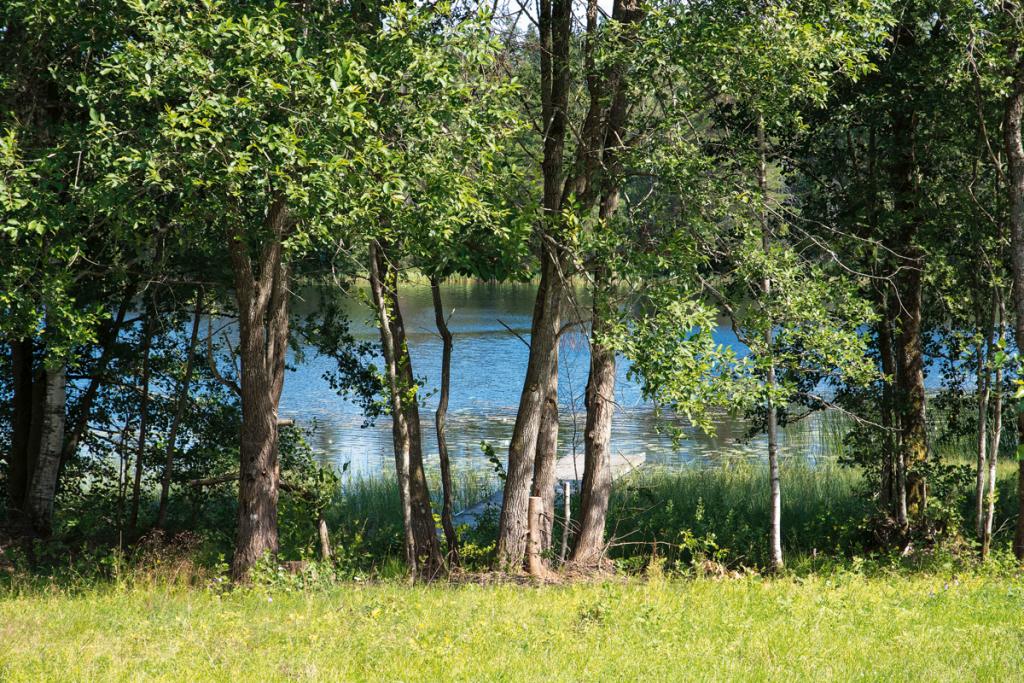 Sjö bakom grönskande träd i Unnaryd.